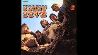 The Count Five - Psychotic Reaction thumbnail