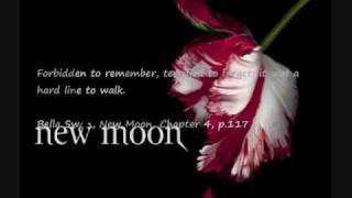 my New Moon Soundtrack #1-Duet-Rachael Yamagata w subtitle lyrics