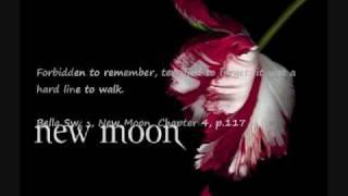 my New Moon Soundtrack #1-Duet-Rachael Yamagata w subtitle lyrics