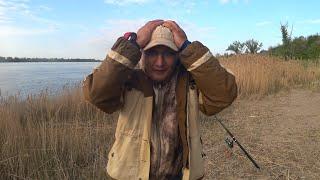 Вот Это Сезон Рыбалка на Волге Рыбалка на Закидушки Донки Ловля на Течении Рыбалка 2021