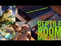 May 2017 Reptile Room Update!