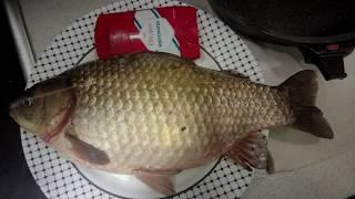 Подводная Охота Октябрь 2019 Караси гиганты и вылазка множества щуки Spearfishing crucian giants