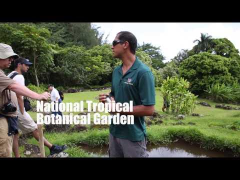 Hawaiian Field Studies 2014 Memories