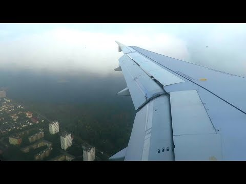 Aer Lingus Airbus A320 WING VIEW Landing At Berlin Tegel Airport (TXL) | Seat 17A
