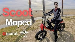 Scoot Moped - New electric moped from Scoot/Bird (Review)