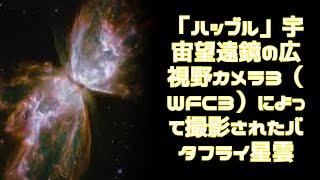 死にゆく星が描き出す、宇宙にはばたくバタフライ