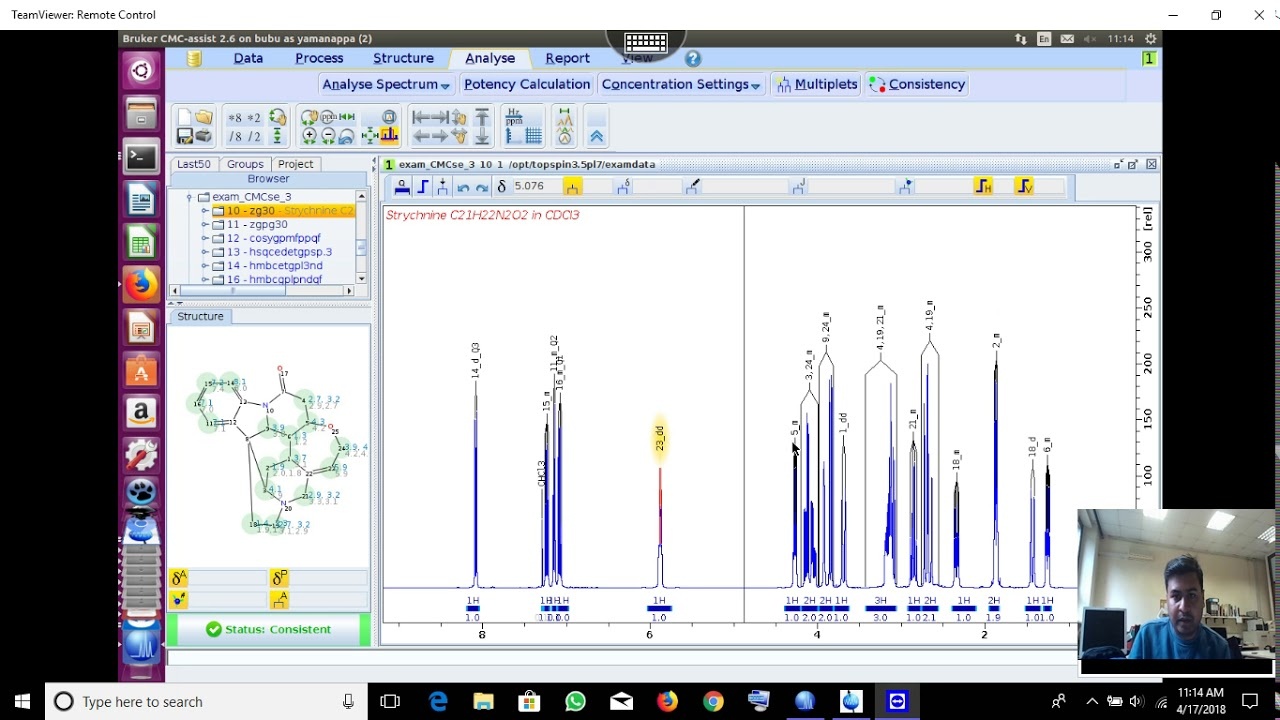 NMR automatic assignment and structure analysis by Bruker CMC Assist