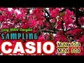 Song MIDI Dangdut SAMPLING Casio MZX500 300