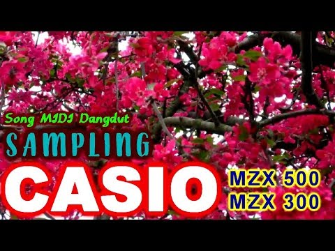 Song MIDI Dangdut SAMPLING Casio MZX500/300