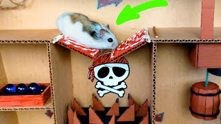 🐹Hamster in the awesome Ship maze for pets in real life