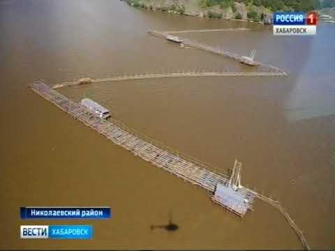 Вести-Хабаровск. Рыбы нет