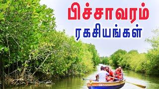 Pichavaram Mangrove Forest   Boating Fun   Tamil