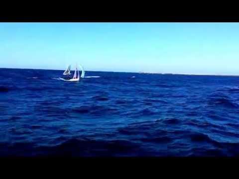 29er sailing offshore Durban
