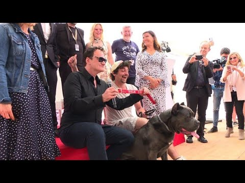 AFP news agency: Tarantino accepts 'Palm Dog' for 'Once Upon a Time...' canine