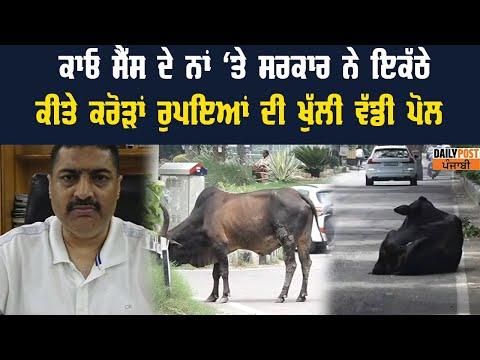 common eligibility test /Punjab Police recruitment / Punjab Patwari Bharti / free Job Alert Punjab from YouTube · Duration:  3 minutes 8 seconds