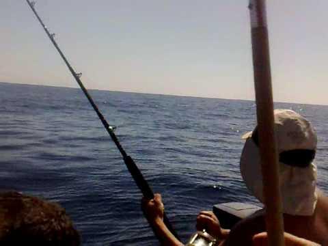 1er Pescado Verny
