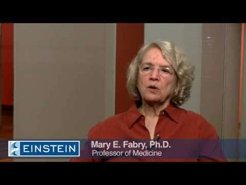 Science Talk: Blood Protein Offers Help Against Anemia