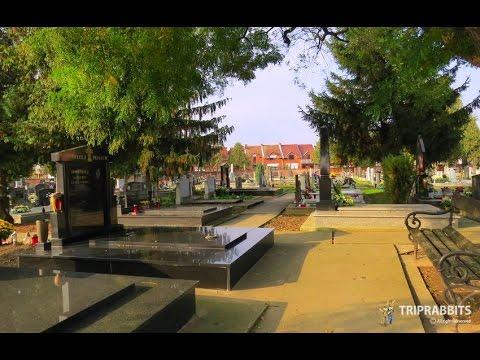 Cemetery Mađarska retfala (Osijek)