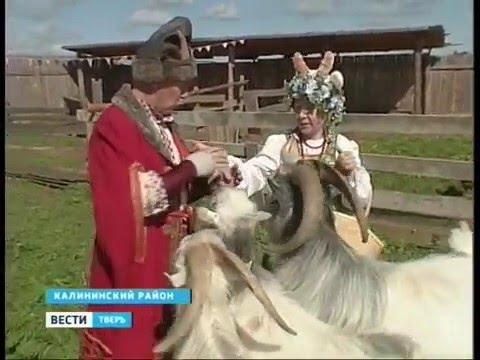Музей козла из Тверской области