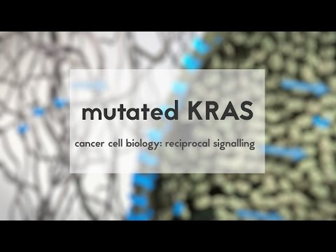 Cancer cell biology: mutated KRAS & reciprocal signalling