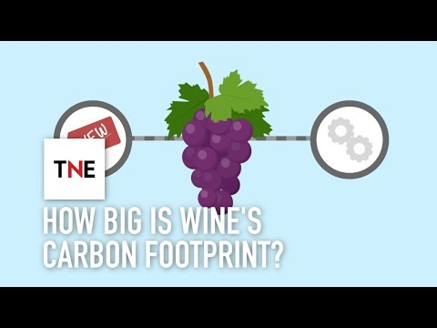 wine article How big is wines carbon footprint and how can technology reduce it The New Economy