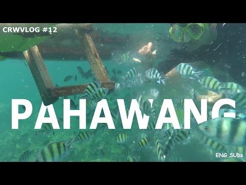 Travel vlog - Pulau Pahawang Lampung. Pesona Indonesia