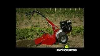 Rotovator sur euro-expos - Motoculteur à fraises arrières moteur OHV 6,5 CV