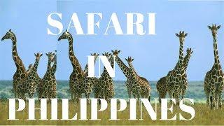 CALUIT SAFARI: The Africa of the PHILIPPINES