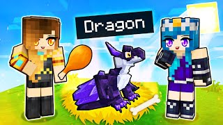 We ADOPTED Baby Dragons in Minecraft!