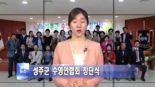 성주군 수영연합회 창단식