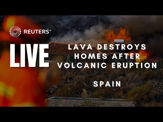 Live video of La Palma from our partners at TV Canarias