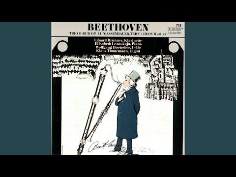 Duet For Clarinet & Bassoon In B-Flat Major, WoO 27 No. 3: II. Aria Con Variazoni. Andantino...