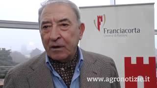 Il futuro del Franciacorta, tra estero e territorio d'origine