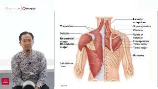 Bismillah Fajar 1710702055 fisioterapiupn Tugas Like dan Subscribe Follow IG : fajarnalmsyah..