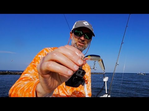 Brenton Sound Trout Feeding Frenzy and Jerkbait Problems