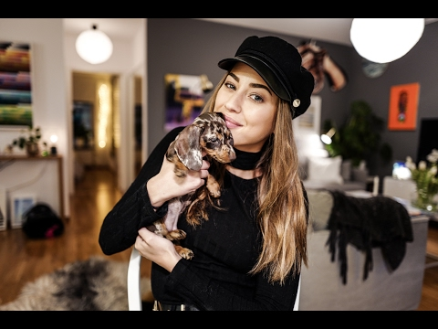 MEET THE NEW PUPPY - Saturday vlog