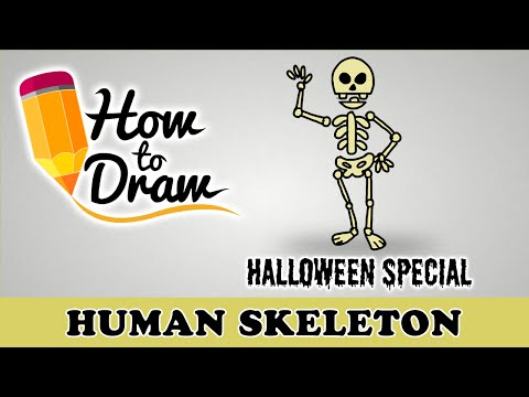 How To Draw A Human Skeleton - Halloween Special - Easy Drawing Lesson With Colouring