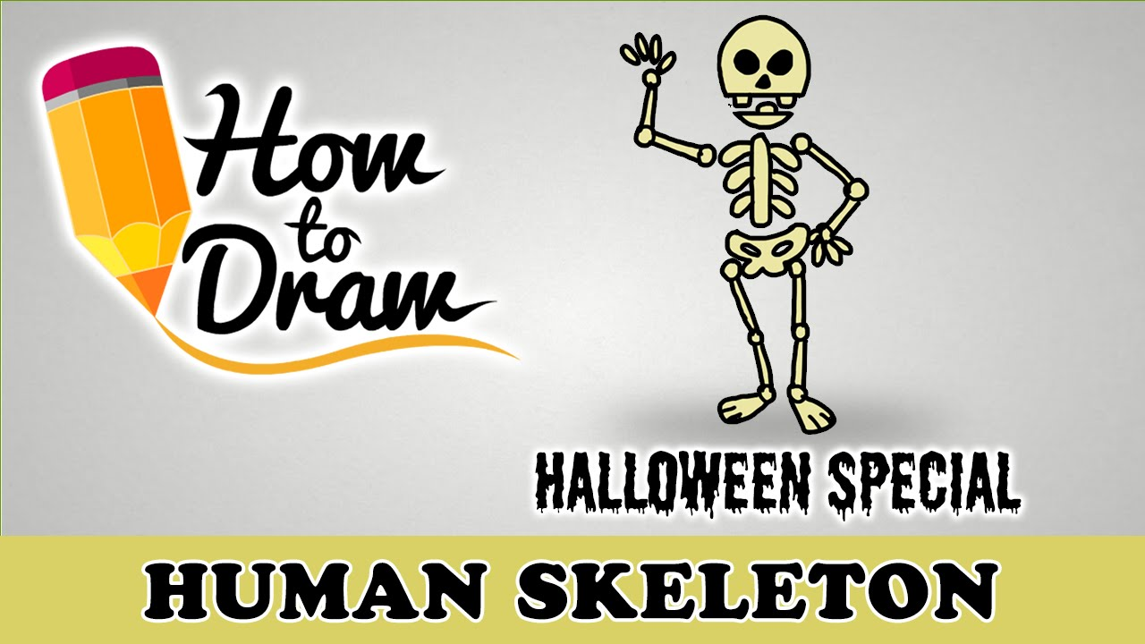 How To Draw A Human Skeleton - Halloween Special - Easy Drawing ...