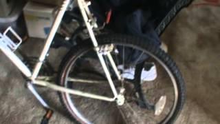 Nishiki - Colorado Mountain Bike (2)