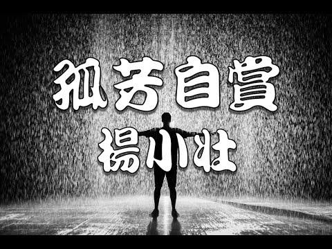 孤芳自賞 - 楊小壯【動態歌詞】 - YouTube