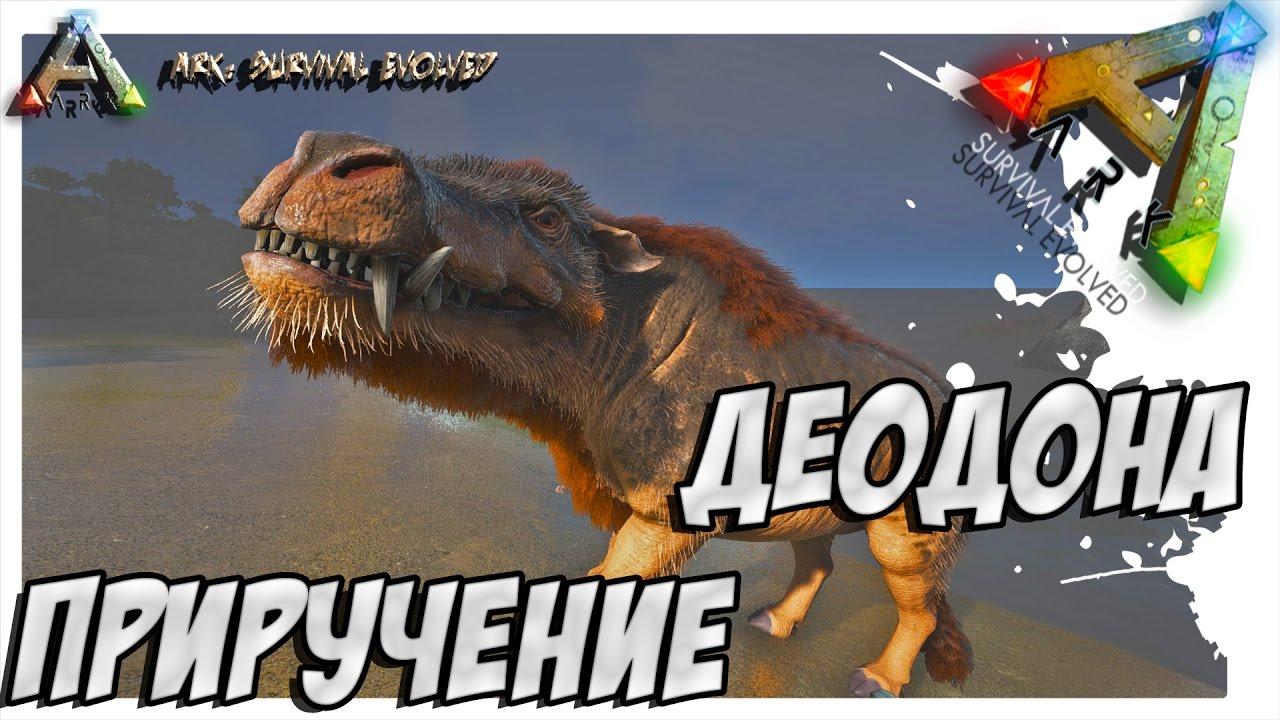 Ark Survival Evolved Priruchenie Deodona Taming Daeodon Youtube Survival evolved versions, including pc, xbox and ps4. youtube