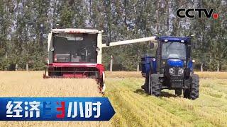 《经济半小时》 20201223 探访未来农业| CCTV财经 - YouTube