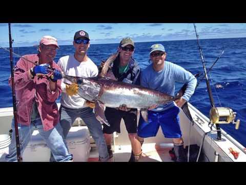 Daytime Swordfish | S14 E4