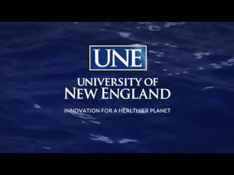 UNE Westbrook College Of Health Professions Undergraduate Commencement Ceremony 2018