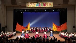 堺よさこいかえる祭 ビッグアイ会場 神戸学生よさこいチーム湊(H290625)