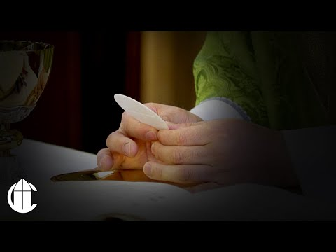 Catholic Mass: 11/23/20 | Monday of the Thirty-Fourth Week in Ordinary Time