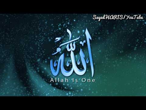 Zikr Aman Hai Zikr Hai Fatah || Zikrullah || Most Beautiful Lines WhatsApp Video By SayedHARIS