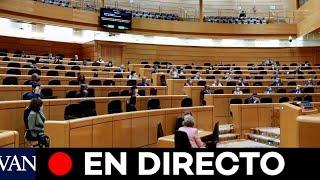 DIRECTO: Sesión de control al Gobierno en el Senado
