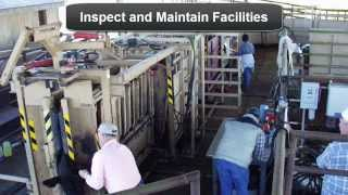 Beef Cattle Handling Facilities Basic Components