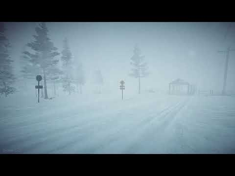 8 Hours Blizzard Sounds & Howling wind | Winter Storm Sounds | Heavy Snowstorm